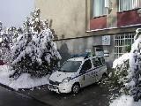 městská policie Sokolov
