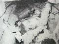 obrázek ke článku: Jaroslav Papež vraždil v promítací kabině při představení