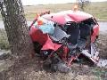 obrázek ke článku: Nezvládl průjezd zatáčkou a o strom zdemoloval Punto